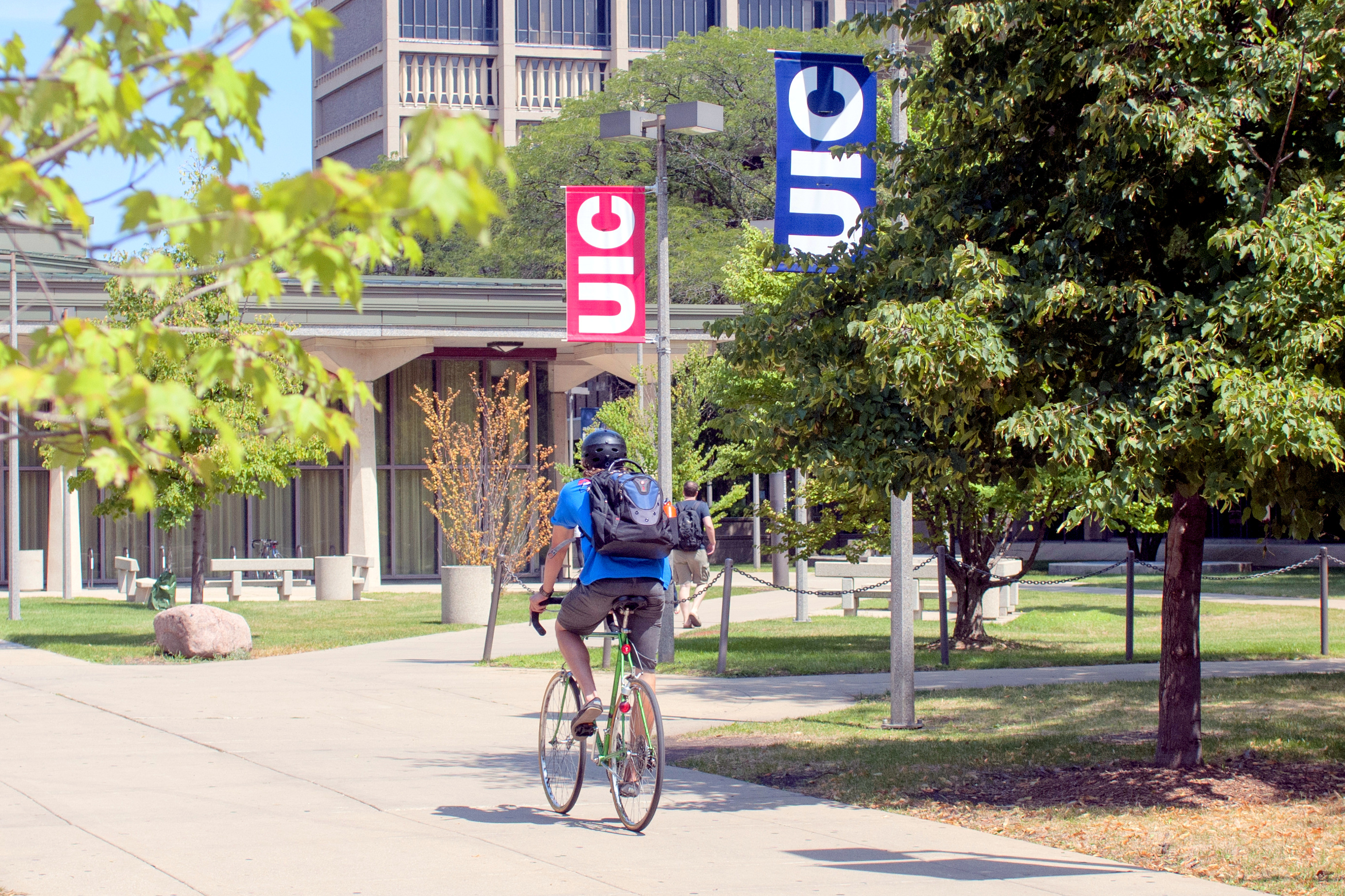 Uic Summer 2020.Summer Session